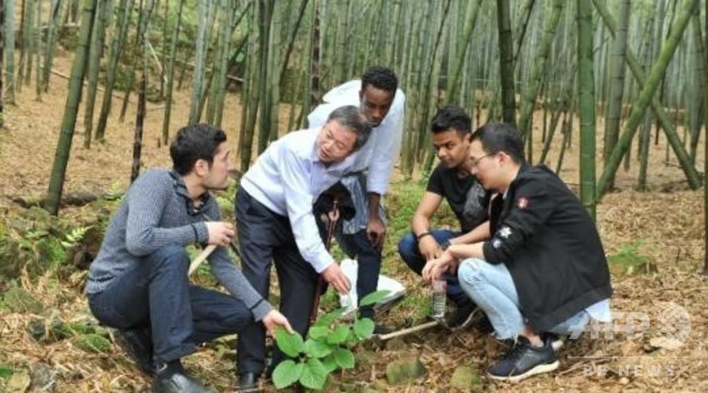 「一帯一路」で増加する海外留学生、中国との懸け橋に