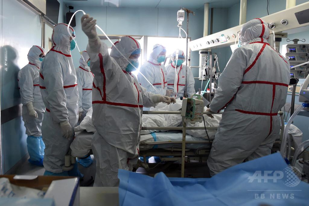 FAO、中国に鳥インフル対策強化求める