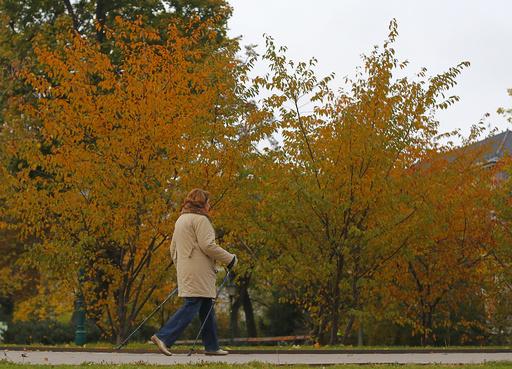 がんや脳卒中の死亡リスク、週1回のウオーキングでも減少 研究