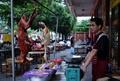 犬肉の販売禁止?国際的非難浴びる中国の祭りで 飲食店側は否定