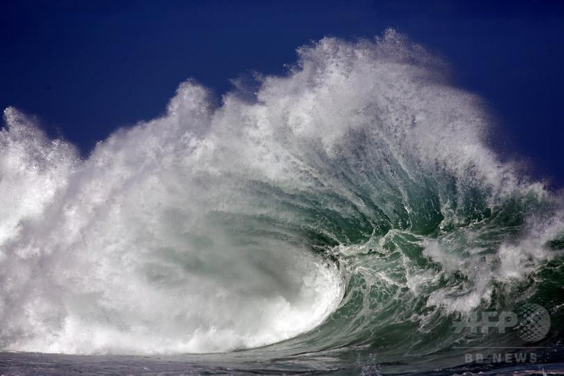 海洋酸性化が進行、科学者が警告