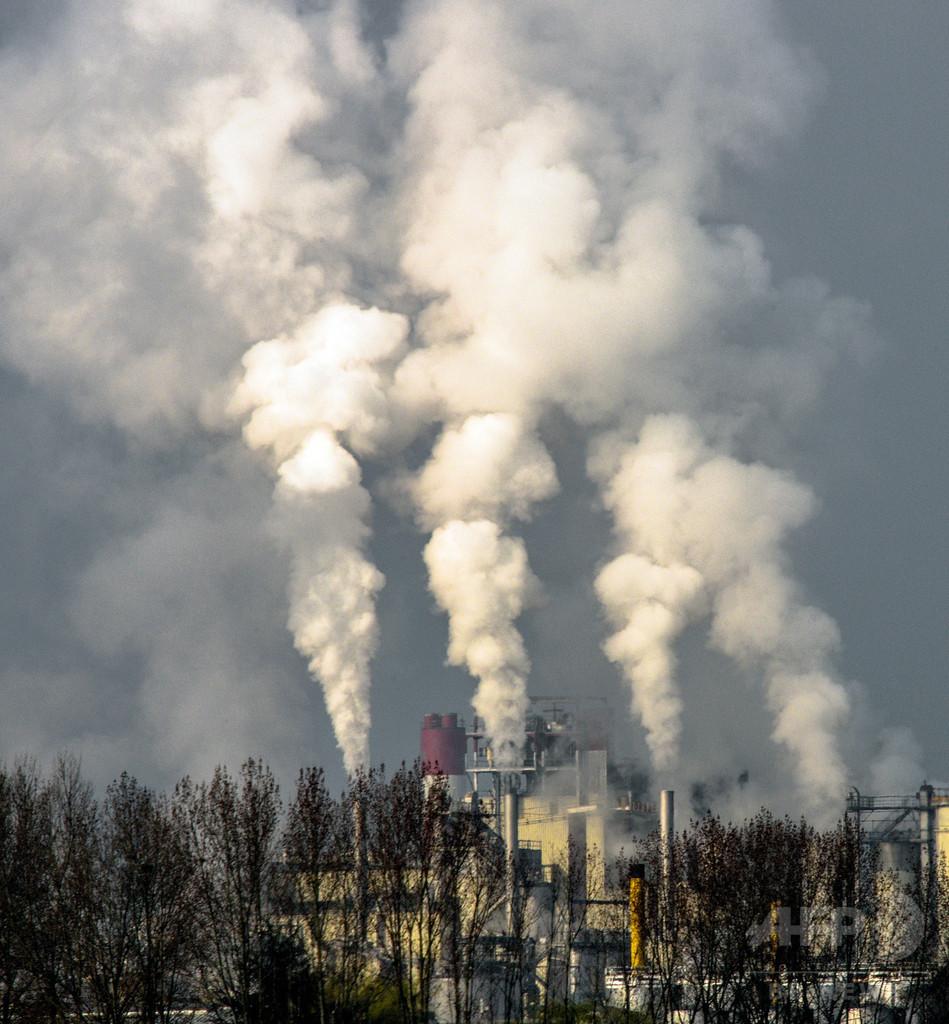 海洋微生物の窒素固定、地球温暖化で急上昇 研究