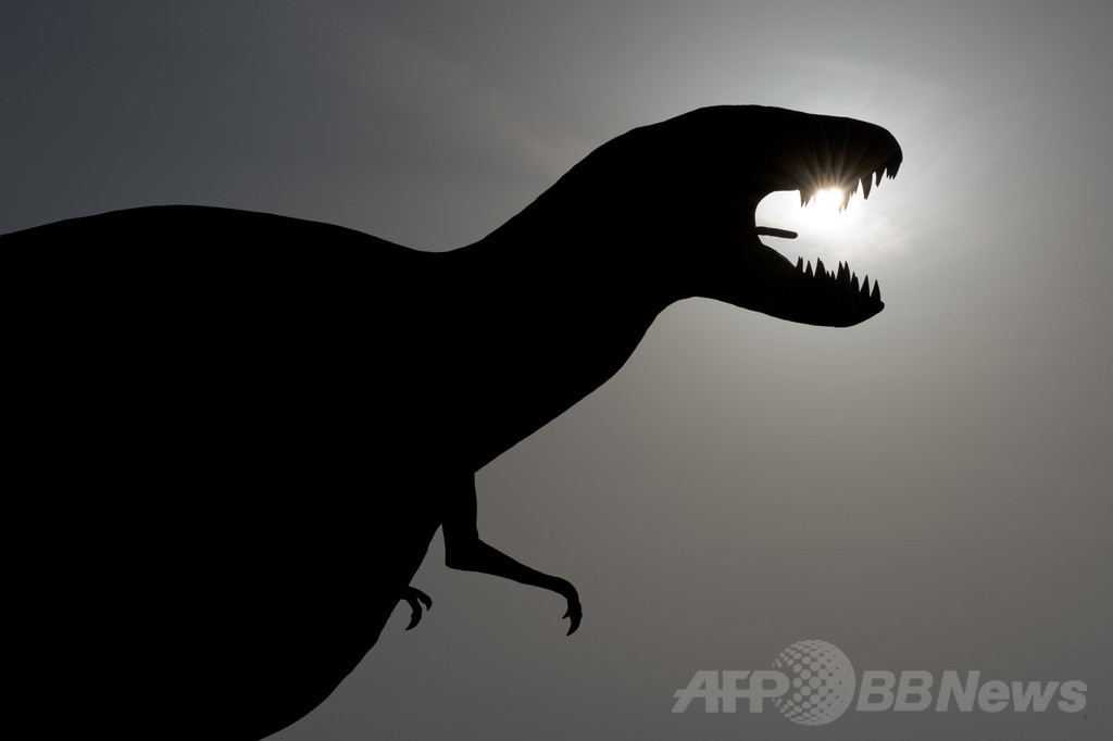 恐竜は「中温動物」、米チームが新説発表