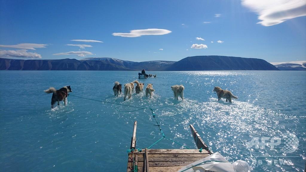 北極で記録的高温、進む氷の融解 1日37億トンの消失も