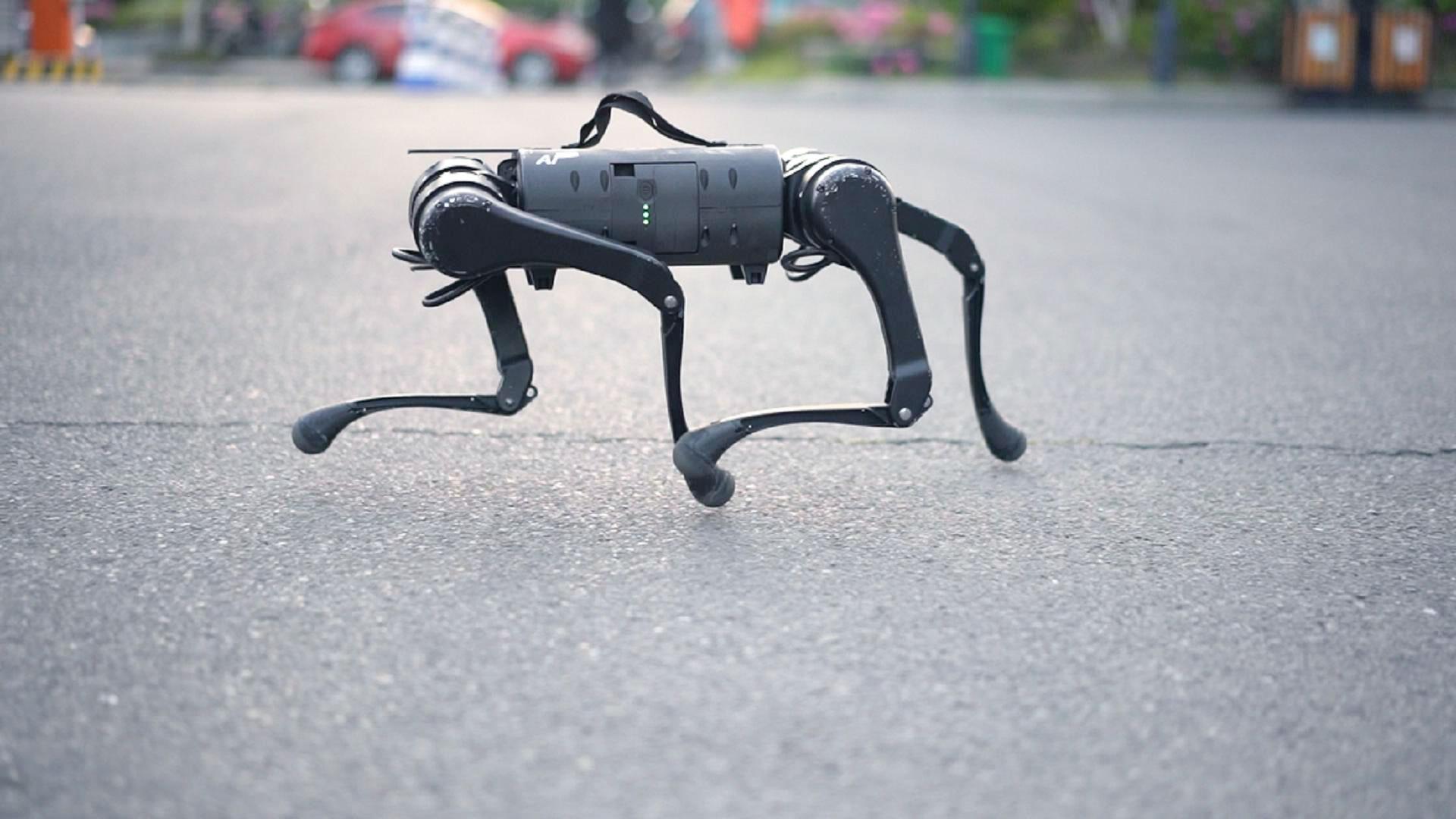 犬型ロボットと出かけよう 中国