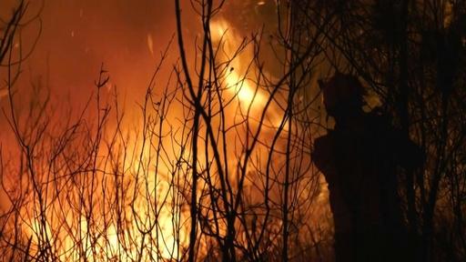 動画:ポルトガル中部で山火事、消防隊員1700人が消火活動 現場の映像
