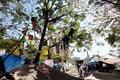 ハイチ政府、家失った被災者を近郊テント村へ大量移送
