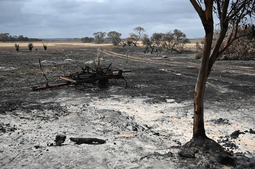 豪森林火災 全人口の75%、1800万人に被害
