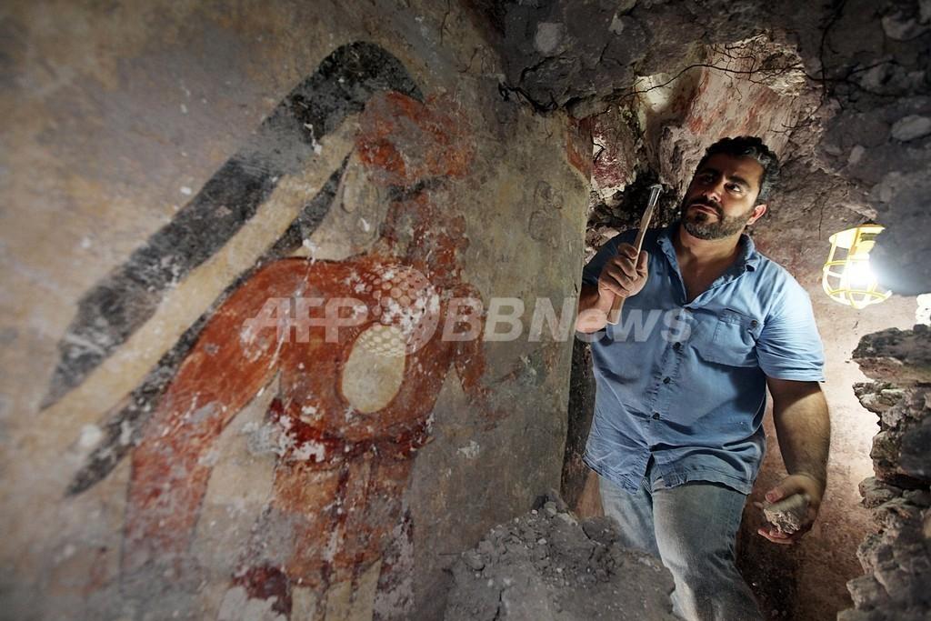 古代マヤ文明最古の暦を発見、遺跡の住居跡の壁から