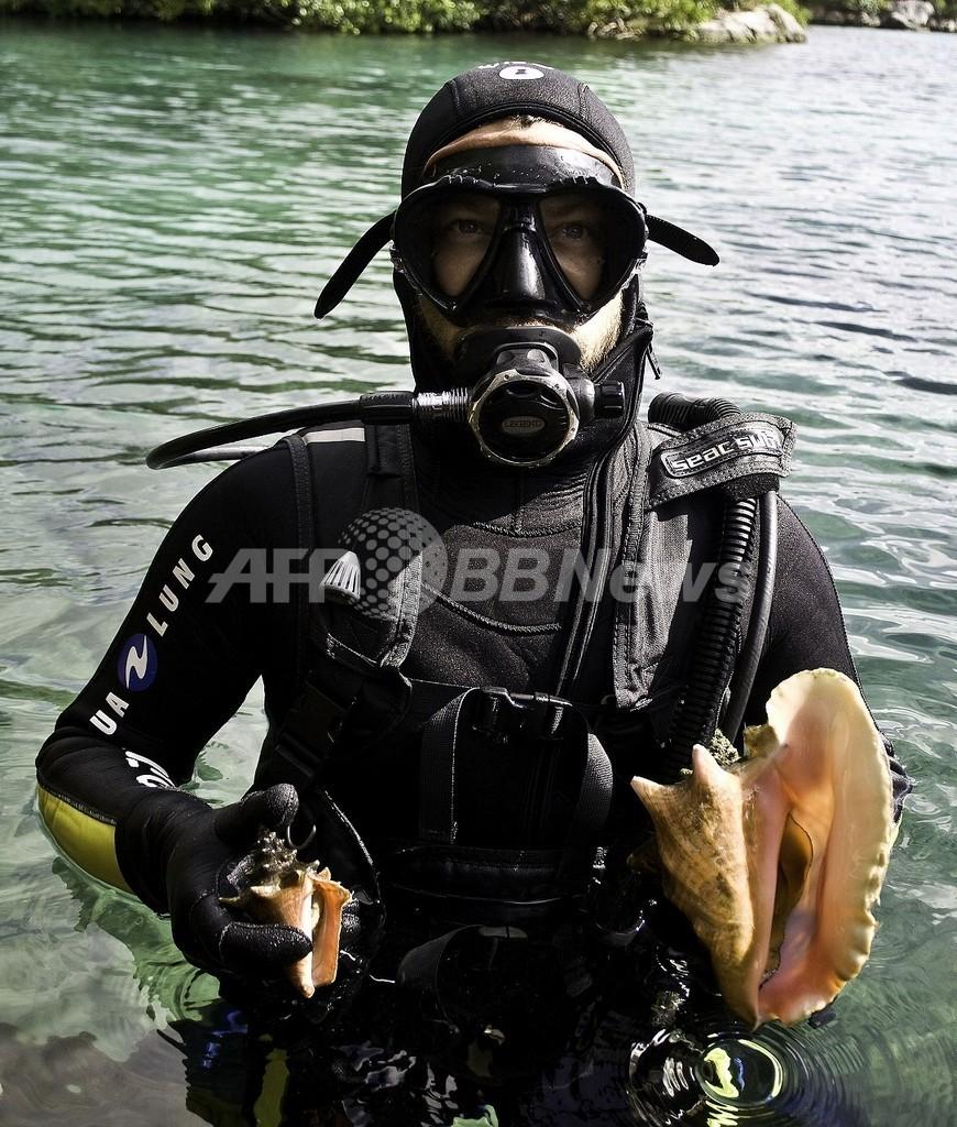 温暖化の影響、貝で探れ!リゾート地カンクン沖で地道な調査
