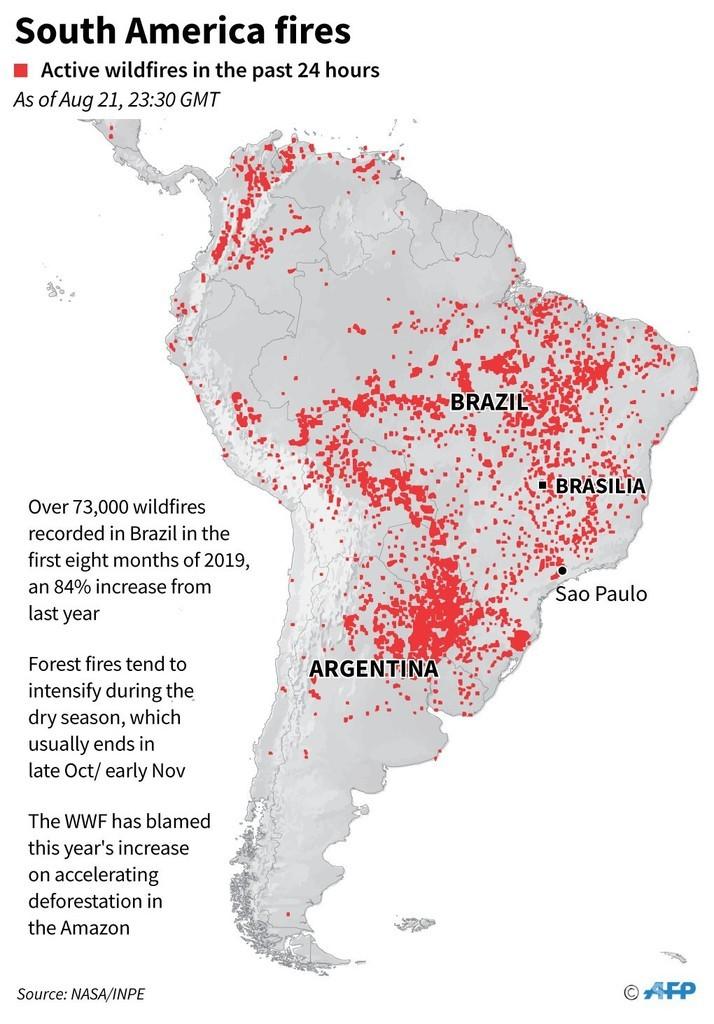 炎上するアマゾン、ネットで話題に ブラジル大統領はNGO非難