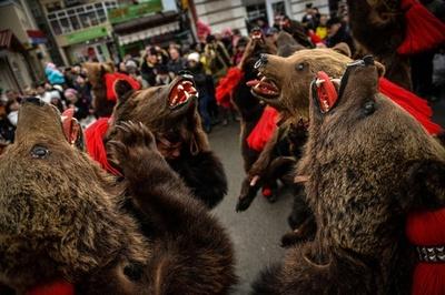 「クマの行進」で新年迎える、ルーマニアの祭り