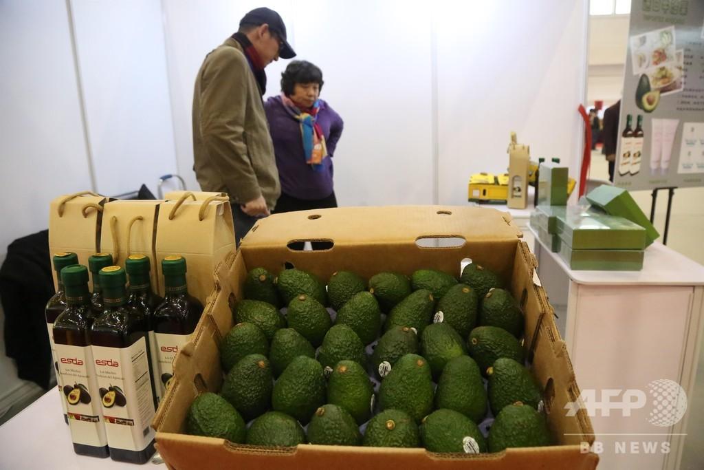 海南島のアボカド、品種改良で地域の経済発展と農民の収益増加の可能性