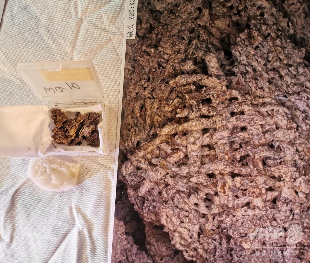 中国最古の絹織物を発掘、河南省ケイ陽市の汪溝遺跡