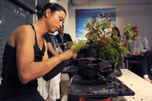 異色の盆栽師、平尾成志が魅せる現代のBONSAI