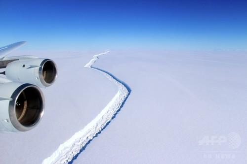 南極で巨大棚氷が崩壊間近、過去最大級の氷山誕生へ