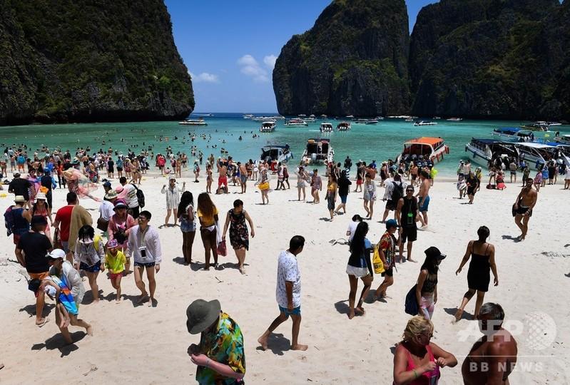 映画『ザ・ビーチ』の浜辺、無期限で閉鎖 生態系の回復図る
