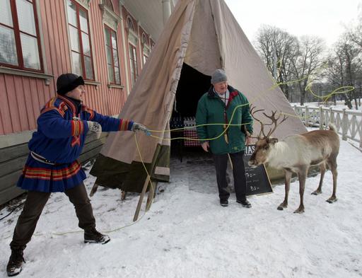 伝統のトナカイ放牧に「粋」な司法判断、スウェーデン
