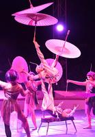 【写真特集】芸を磨き115年、「木下サーカス」の華麗なる演技