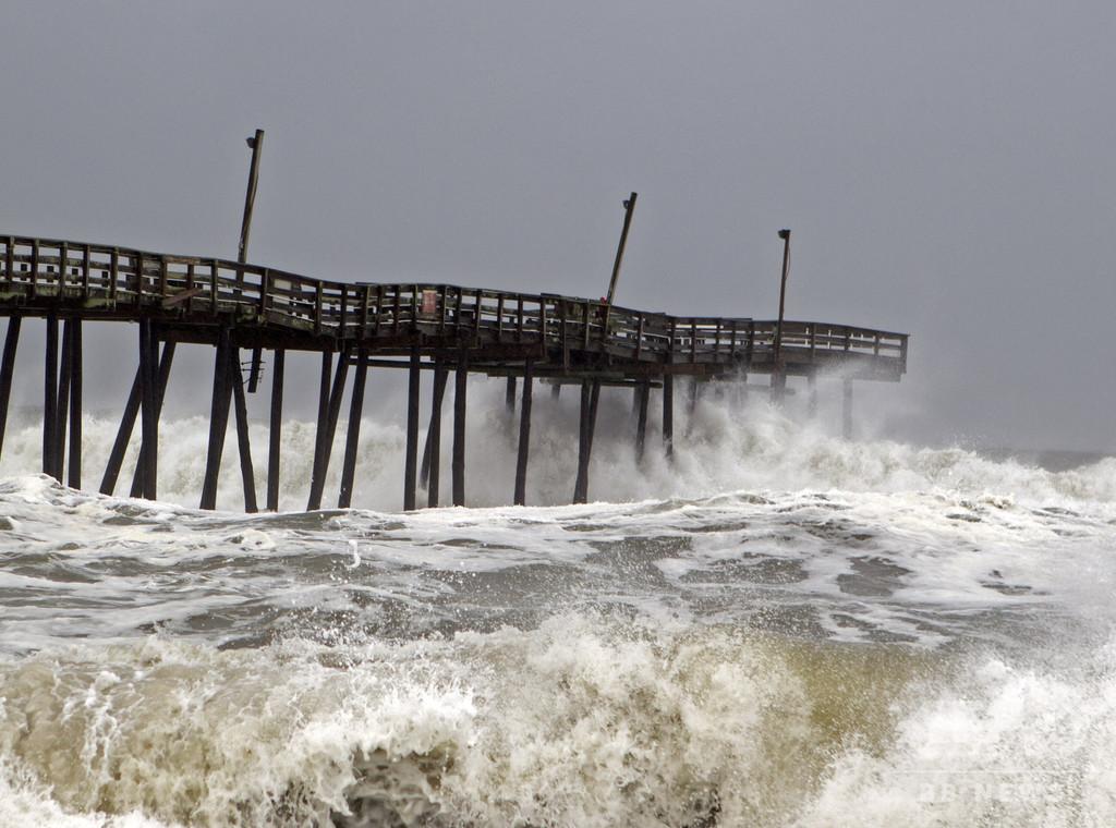 9月のハリケーンで海に流された牛3頭、沿岸の島で発見 米
