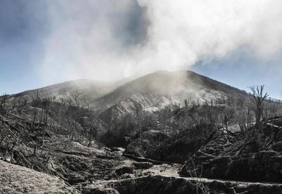 トゥリアルバ火山が活発化、周辺に噴煙被害 コスタリカ