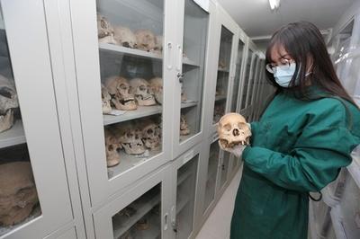 新石器から清代まで人骨標本5000点を保管 西北大学の考古・人類学実験室