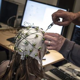脳信号で大衆の好みを予測、広告への応用も 米研究