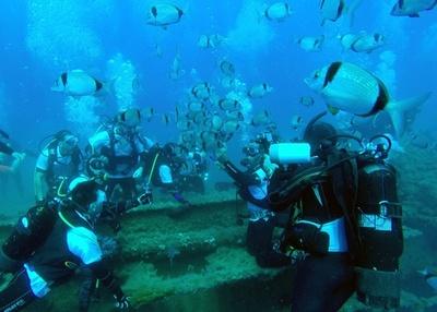 「地中海のタイタニック」、ダイビングの名所に キプロス沖