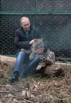 露大統領、IOC幹部と「ヒョウ触れ合いツアー」