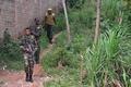 ケニア首都がパニック、ライオン2頭が迷い込む