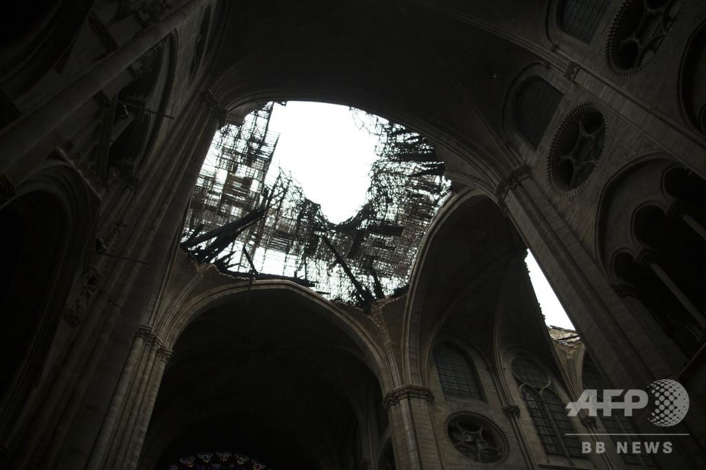木材準備に50年、ノートルダム大聖堂の「伝説的」屋根 再建への道のり