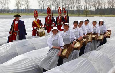 アスパラガスの季節!伝統衣装の男女が収穫 ドイツ東部