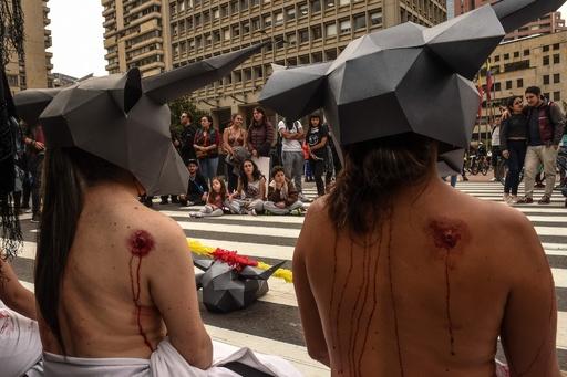 「殺さないで」、上半身裸で闘牛廃止訴え コロンビア