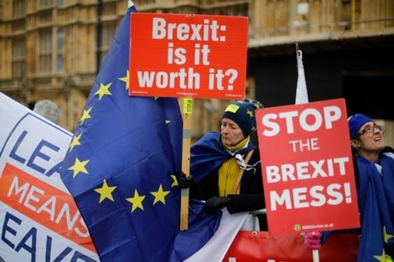 英議員、EU離脱案投票のため出産先延ばし 車椅子で議場へ