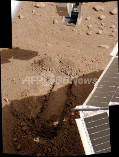 火星の土はアスパラガスがよく育つ、NASA発表