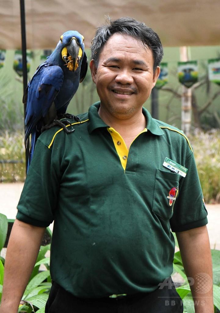 鳥たちと固い絆結ぶ難聴の飼育員、意思疎通も可能 シンガポール