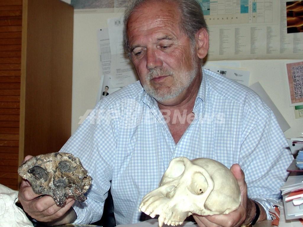 最古のヒト、700万年前に生存か