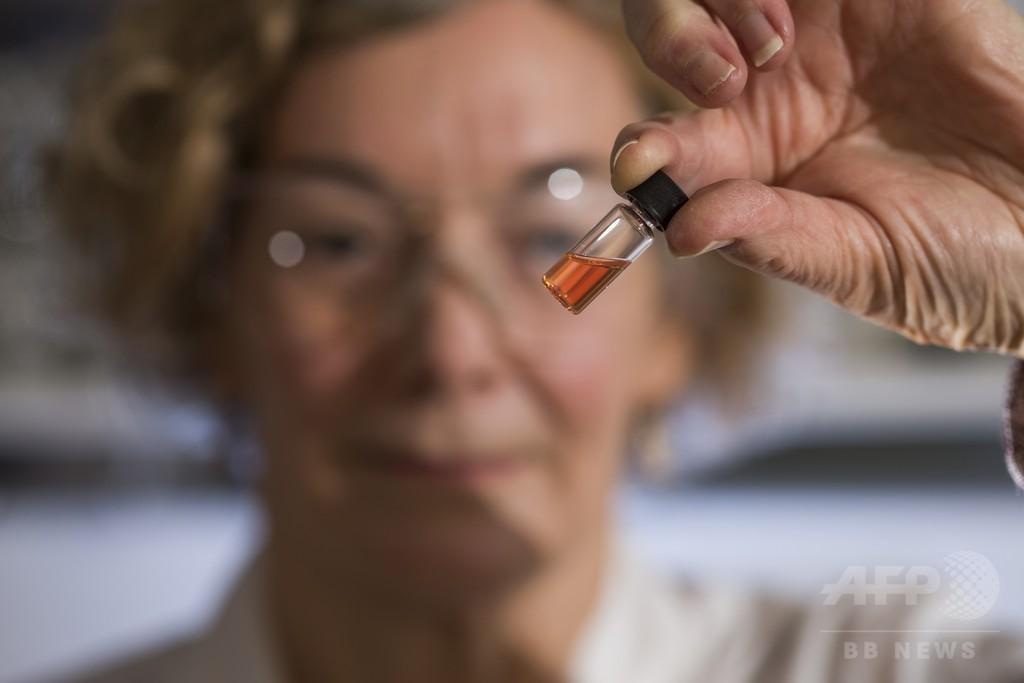 11億年前の生物由来色素を発見、世界最古か 研究