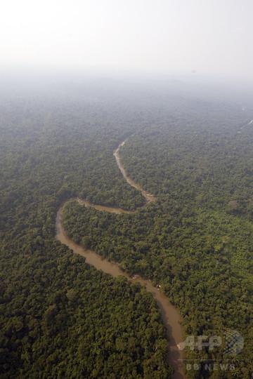 カナダの不明男性、南米アマゾンで保護 失踪から5年