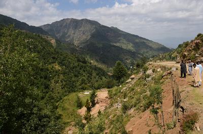 乾燥地が緑あふれる森林に、植林90万本 パキスタン
