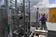 サボテンは未来のエネルギー源となるか メキシコ