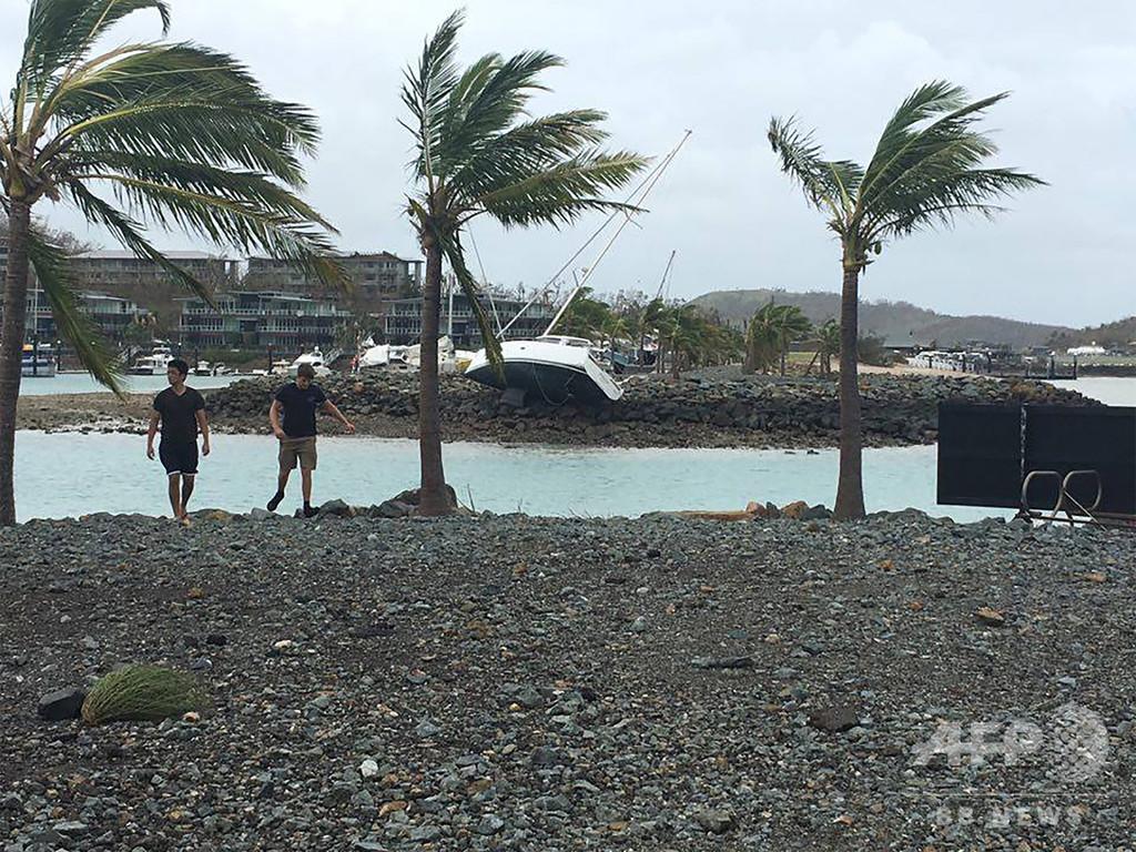 大型のサメ3匹を駆除、人気観光地でサメの襲撃相次ぎ 豪