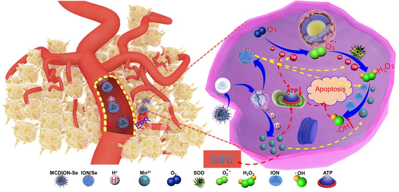 化学療法薬を含まない新たな抗がん剤を開発