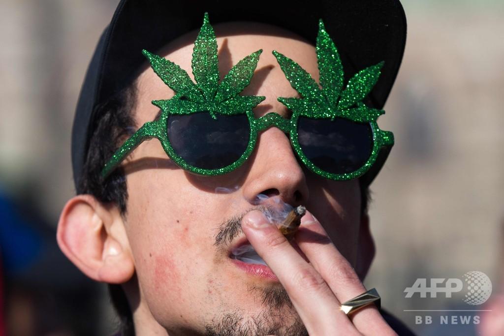 嗜好用大麻解禁控えるカナダ、国民の8割が使用の意思なし 調査