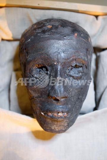 ツタンカーメン王はマラリアで死亡、アクエンアテン王が父 ついになぞが明らかに