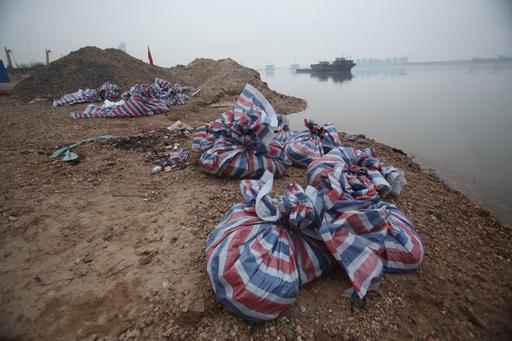 ブタの死骸が再び川に、中国