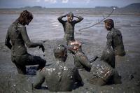 ワンちゃんも大はしゃぎ、泥まみれでカーニバル ブラジル