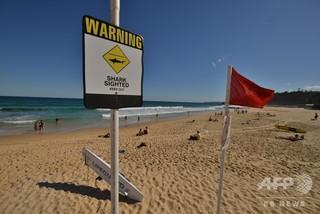 豪ビーチ、サーフィンレッスン中の男性がサメに襲われ重傷
