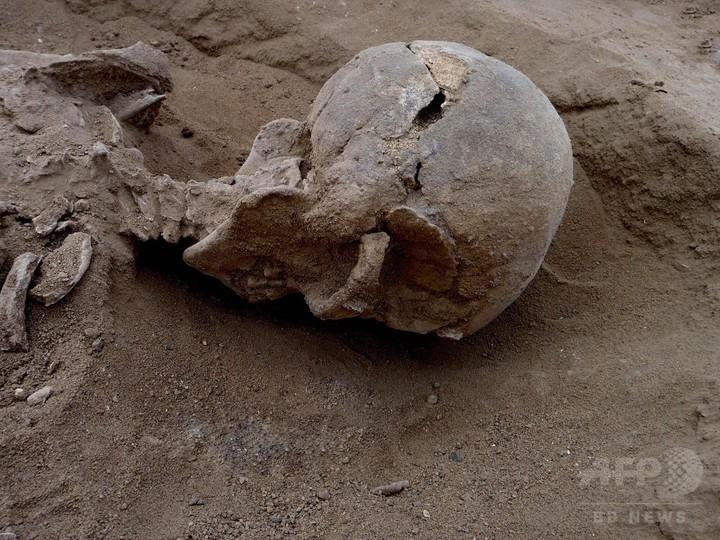 1万年前の人骨に「集団虐殺」の痕跡、研究で解明