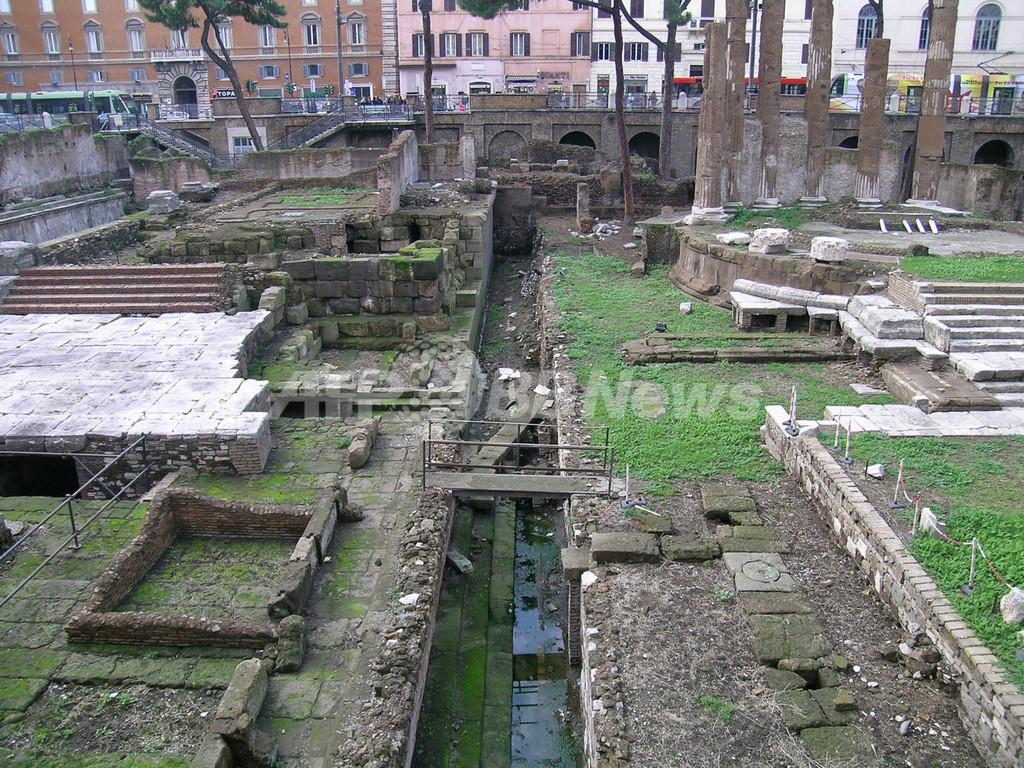 カエサルの暗殺地点を「特定」、スペイン考古学チーム